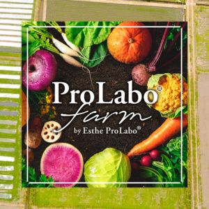 https://prolabo-farm.com/wp-content/uploads/2020/07/mv_logo_sp-300x300.jpg