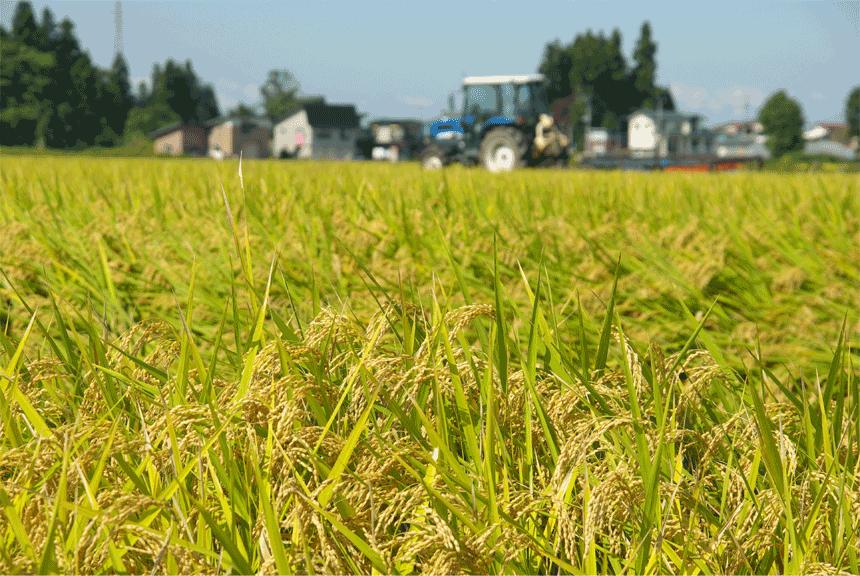 日本は世界から農薬大国と思われている?!