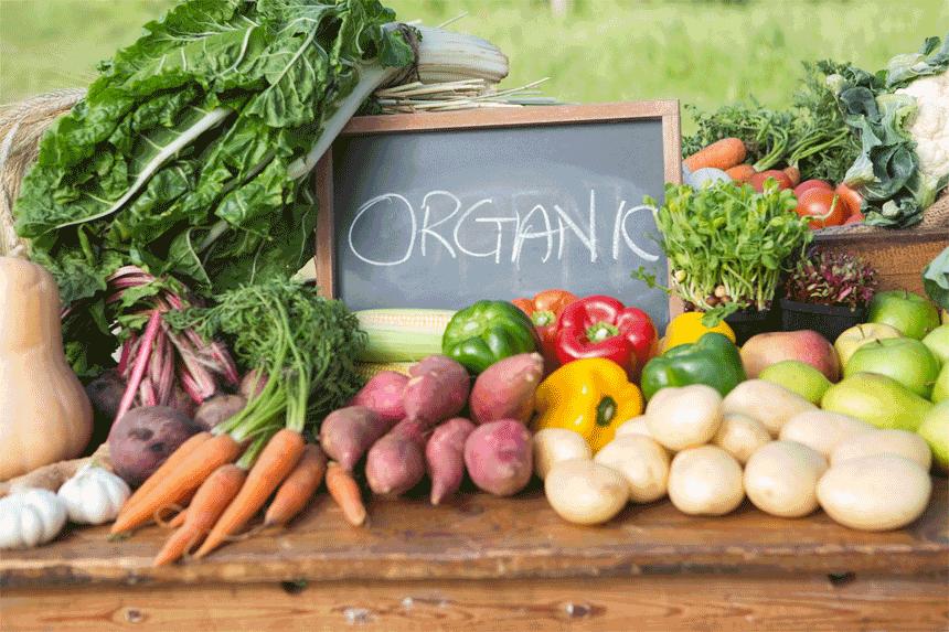 無農薬を選んで農薬のリスクから身を守ろう